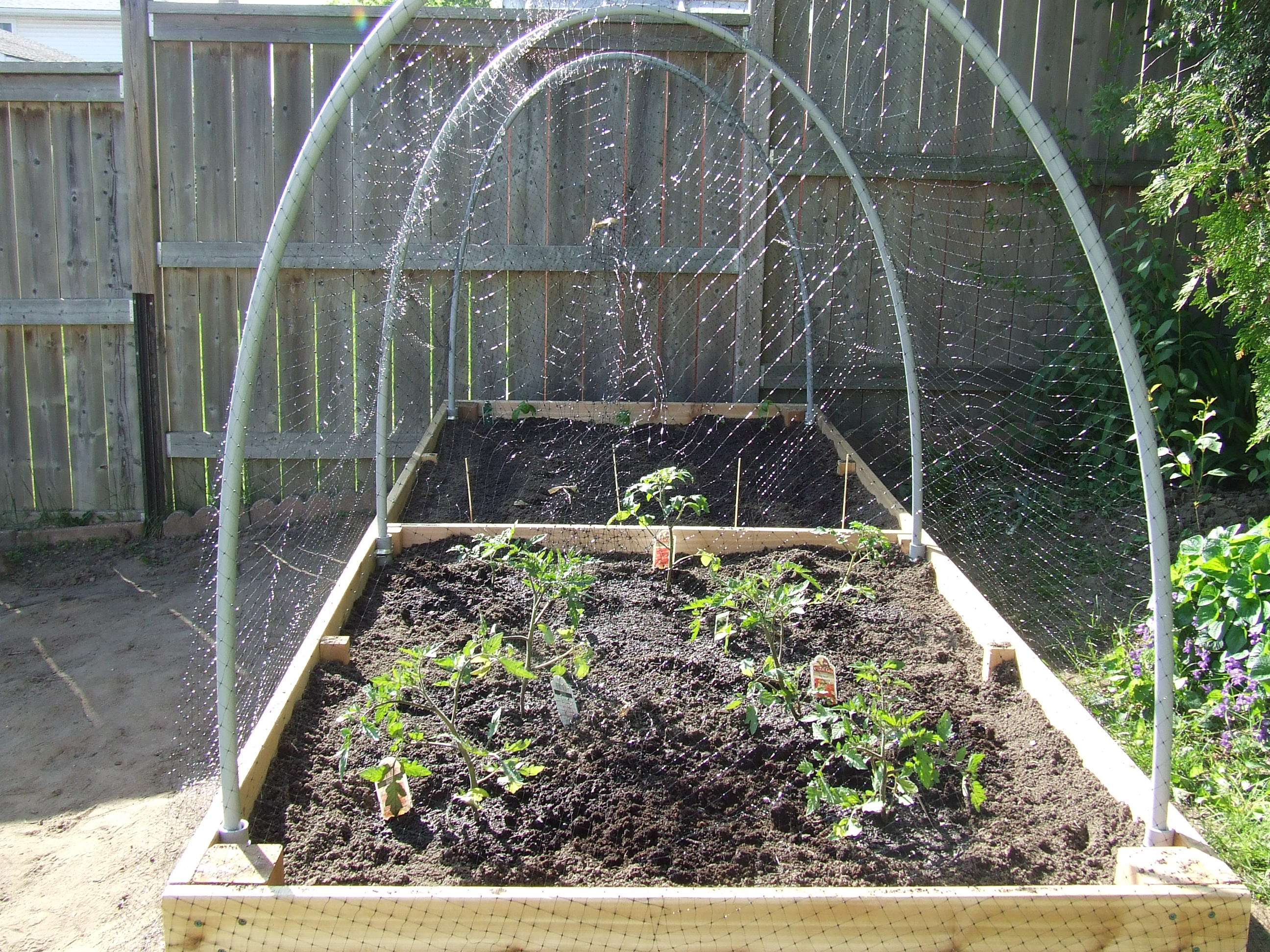 raised garden beds Storygals Blog